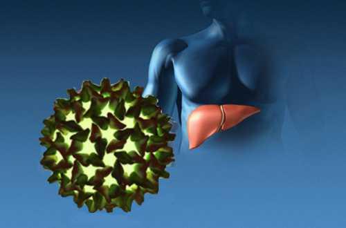 Поражение печени вирусным гепатитом Е