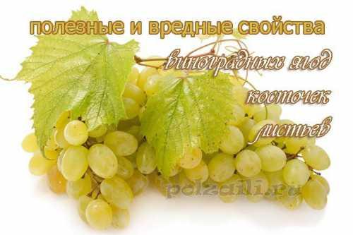 Виноградному соку свойственно хорошее бактерицидное, успокаивающее и слабительное воздействие