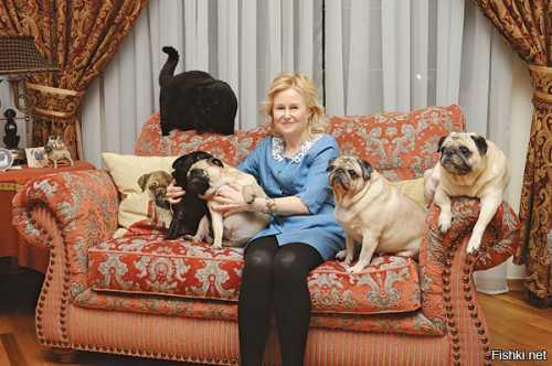 Сосед Сальмы Хайек убил ее собаку