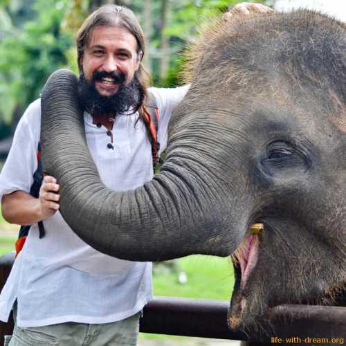 Слоны на Бали в Elephant Safari Park Фотографии на наши отзывы