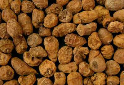 Однако употребление большого количества орехов способно спровоцировать сыпь