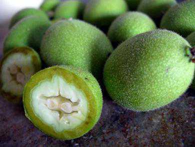 Польза грецкого ореха молочной спелости, настойки